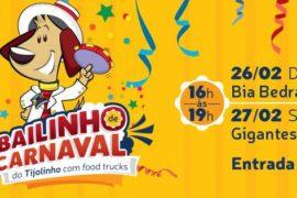 carnaval nova america tijolinho